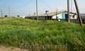 Продается участок,  ферма. 20 гектаров.