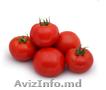 Семена томата KS 829 F1 (Китано).